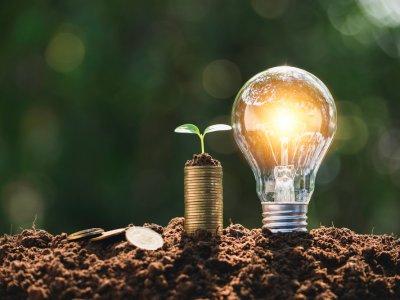 Lampada acessa ao lado de uma pilha de moedas com muda por cima. Imagem ilustrativa texto taxa de franquia