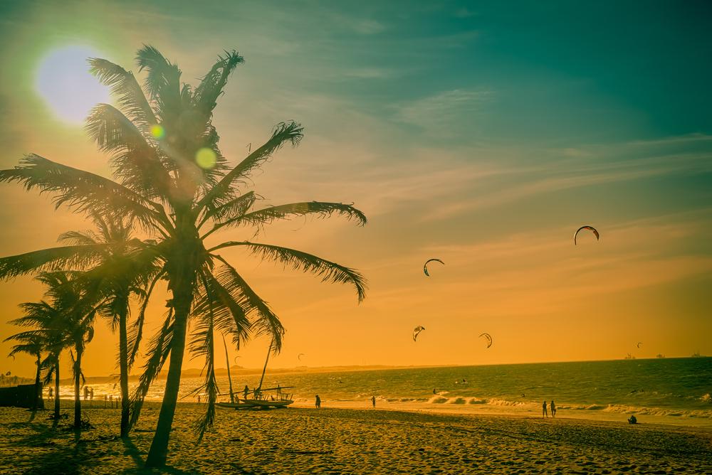 Vemos uma praia com coqueiros, surfistas, pessoas caminhados na areia (imagem ilustrativa).