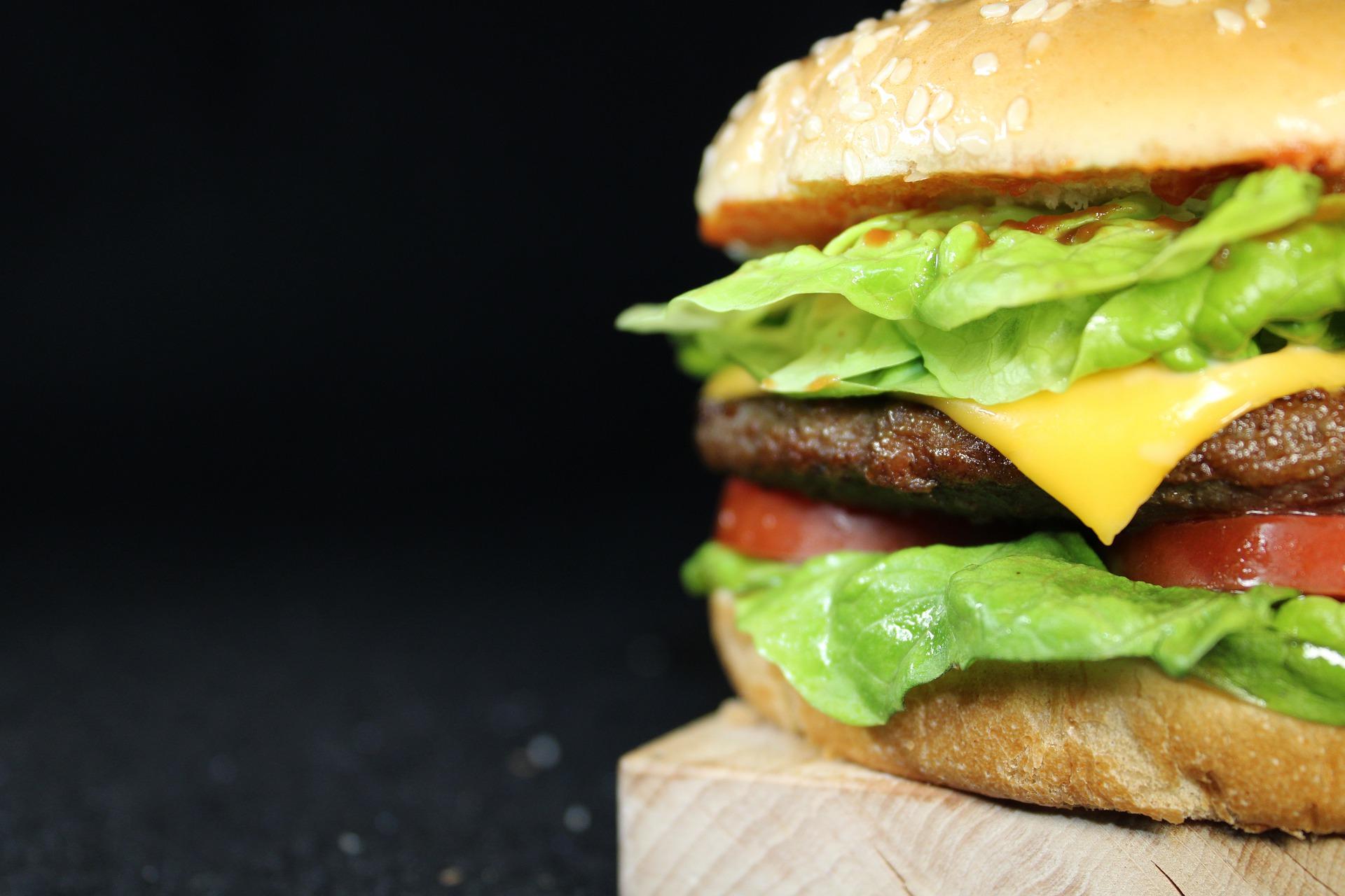 Vemos um sanduíche de fast-food (imagem ilustrativa). Texto: Franquia Burger King.